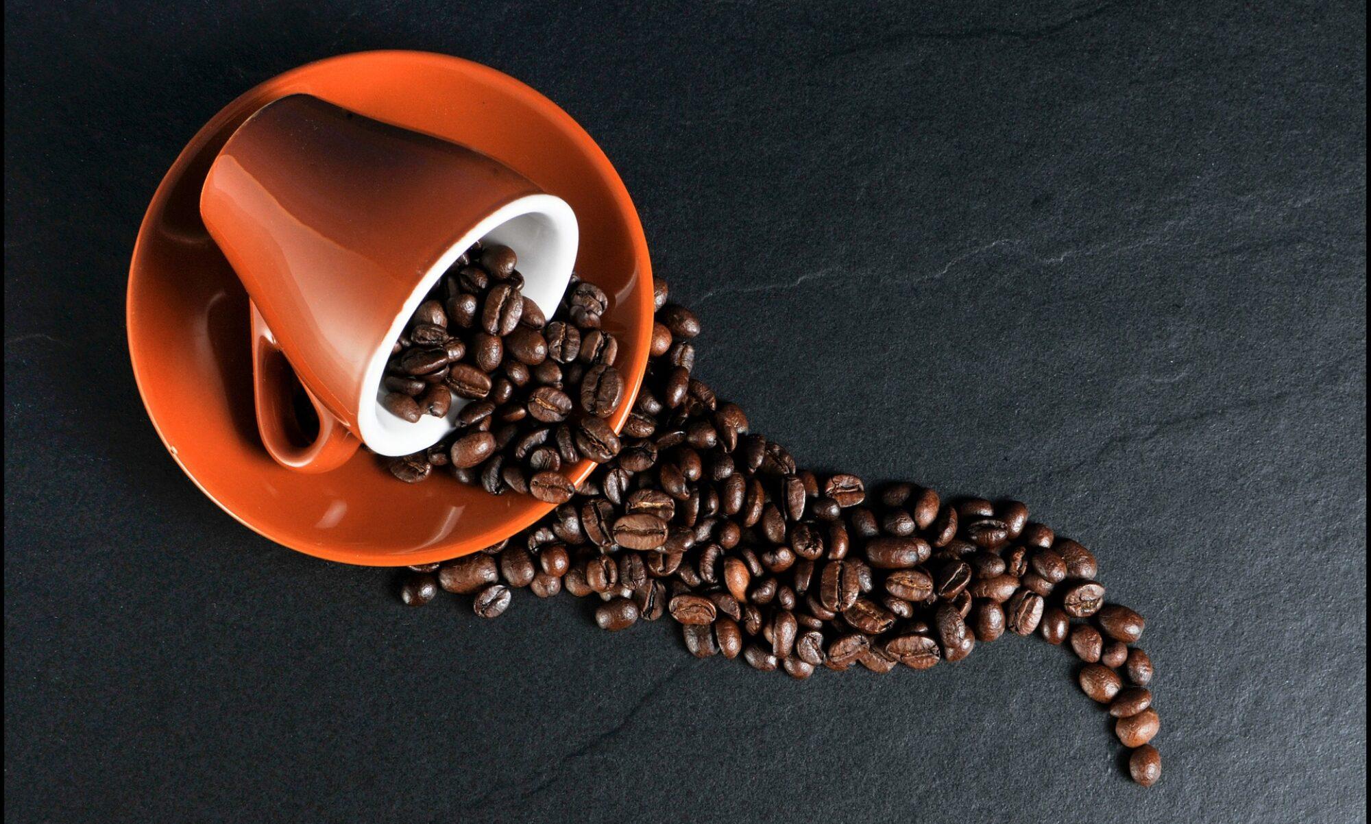 WP Coffee Break!
